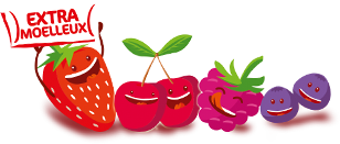 Macoettes fraises